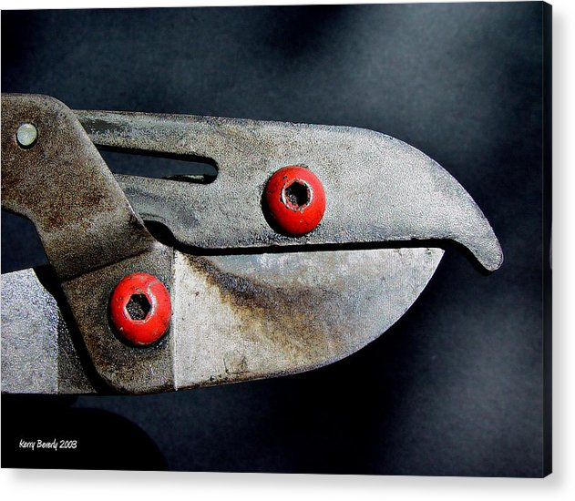 Tool Acrylic Print featuring the photograph Lopper Bird by Kerry Beverly