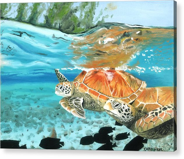 Sea Turtles Acrylic Print featuring the painting Sea Turtles by Chris Wiese