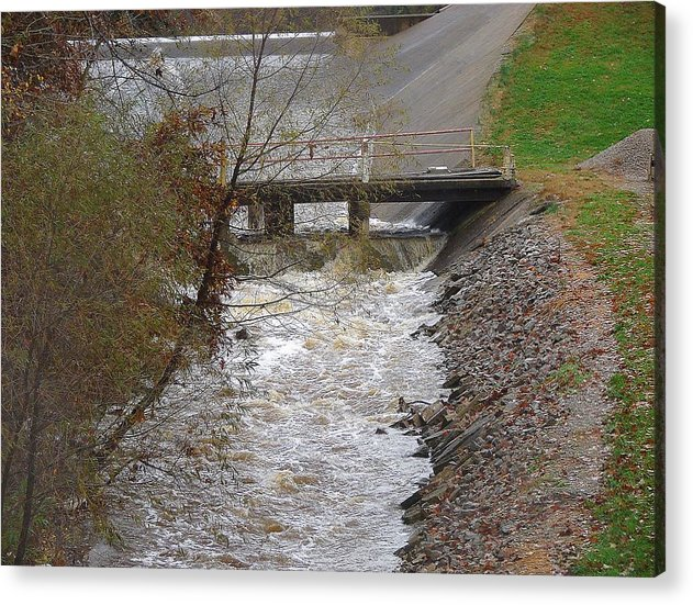 Acrylic Print featuring the photograph Wild Creek by Luciana Seymour
