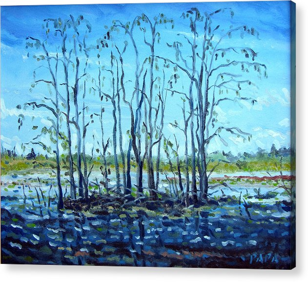 Loxahatchee Acrylic Print featuring the painting At Loxahatchee by Ralph Papa