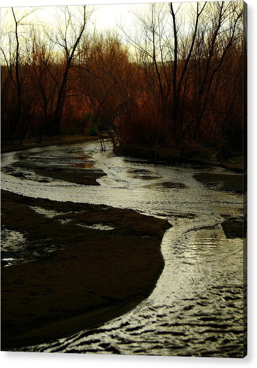 Stream Acrylic Print featuring the photograph Stream by Patrick Short