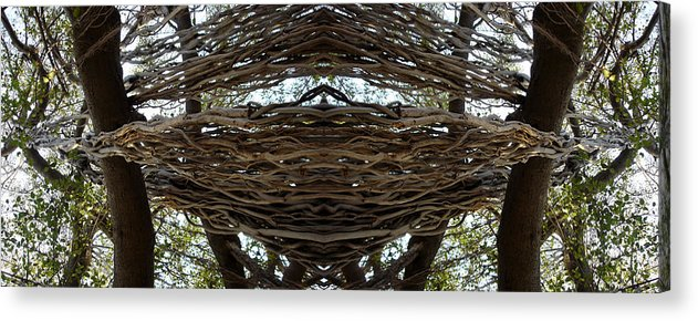 Perplex Acrylic Print featuring the photograph Perplex by Bliss Of Art