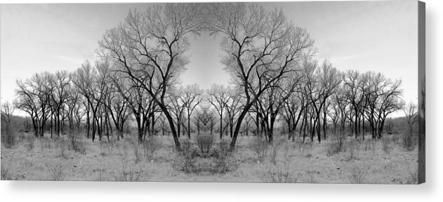 Landscape Acrylic Print featuring the photograph Altered Series - Bare Double by Grace Art Photography