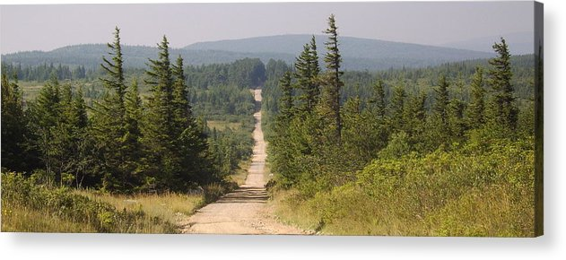 Dirt Road Dolly Sods West Virginia Appalachian Mountain Landscape Images Photgraph Prints Nature Great Outdoors Wilderness Wind Blown Pine Trees Blue Ridge Mountain Prints Acrylic Print featuring the photograph Dirt Road To Dolly Sods by Joshua Bales