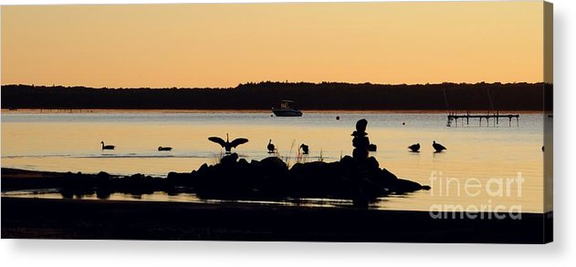 Canada Acrylic Print featuring the photograph Canada Geese by Louise Fahy
