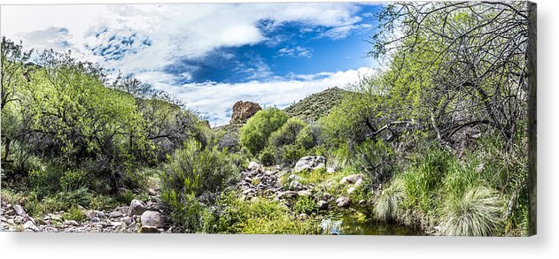 Landscape Acrylic Print featuring the photograph Desert Oasis by Chuck Brown