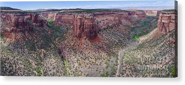 Colorado National Monument Acrylic Print featuring the photograph Ute Canyon by Jeff Loh