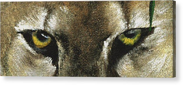Panther Eyes Acrylic Print featuring the painting Whos Watching Who Florida Panther by Darlene Green