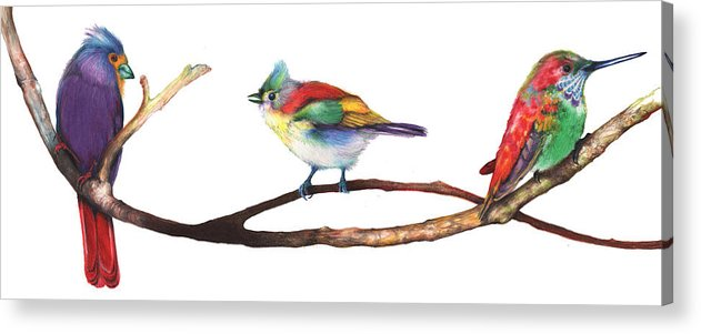 Acrylic Print featuring the mixed media Color Birds Study 3 by Anthony Burks Sr