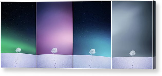 Landscape Acrylic Print featuring the photograph Winter Tree by Bess Hamiti
