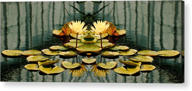 Lillies Acrylic Print featuring the photograph Twin Pond Lillies by Bruce Richardson