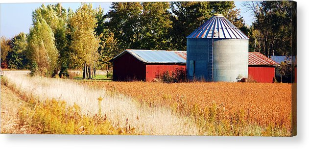 Grain Bin Acrylic Print featuring the photograph Fall Bin by Jame Hayes