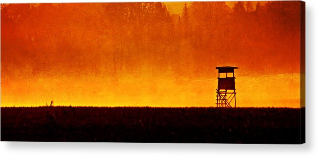 Flora Acrylic Print featuring the mixed media Country Life by Heike Hultsch