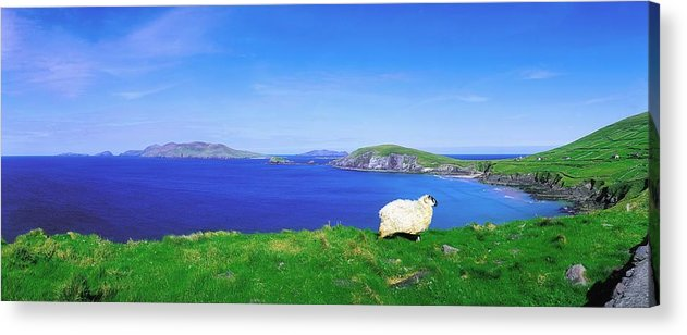 Beauty In Nature Acrylic Print featuring the photograph Dunmore Head, Blasket Islands, Dingle by The Irish Image Collection