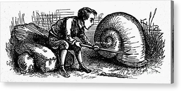19th Century Acrylic Print featuring the photograph Mother Goose: Snail by Granger