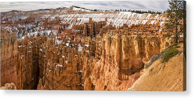 Bryce Acrylic Print featuring the photograph Bryce Canyon Winter Panorama - Bryce Canyon National Park - Utah by Brian Harig