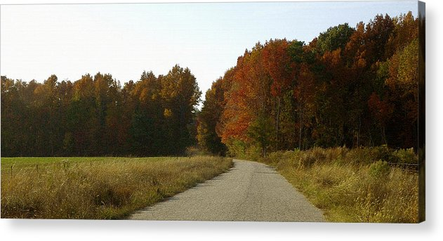 Fall Acrylic Print featuring the photograph Autumn Road by Travis Aston