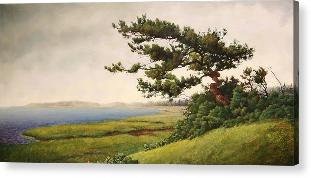 Cape Cod Acrylic Print featuring the painting Wellfleet Saltmarsh by Stephen Bluto