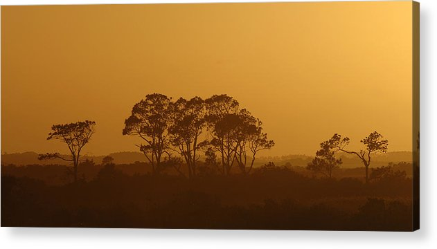 Sunset Acrylic Print featuring the photograph Western Sky by Travis Aston