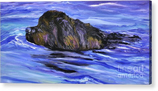 Newfoundland Acrylic Print featuring the painting Newfoundland Oil Painting by Mary Jo Zorad