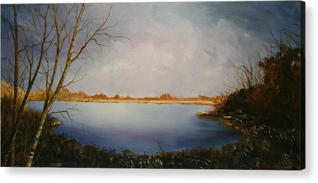 Original Acrylic Landscape Acrylic Print featuring the painting Rotary Pond by Sharon Steinhaus