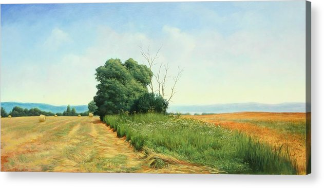 Landscape Acrylic Print featuring the painting Skaneatles Field by Stephen Bluto
