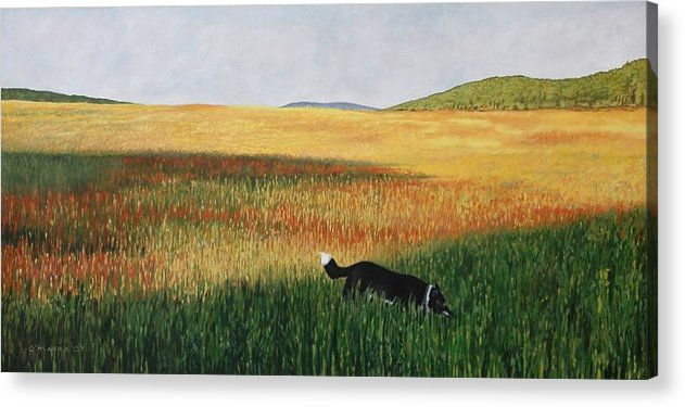 Dog Acrylic Print featuring the painting Missy In The Field by Allan OMarra