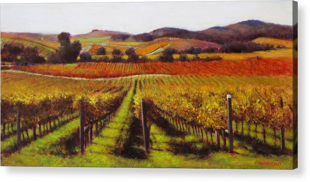 Wine Painting Acrylic Print featuring the painting Napa Carneros Vineyard Autumn Color by Takayuki Harada