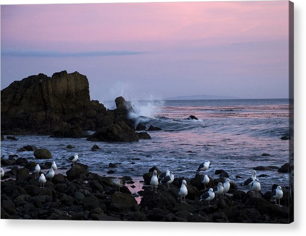 Beach Acrylic Print featuring the photograph Crashing Wave by Jessica Wakefield