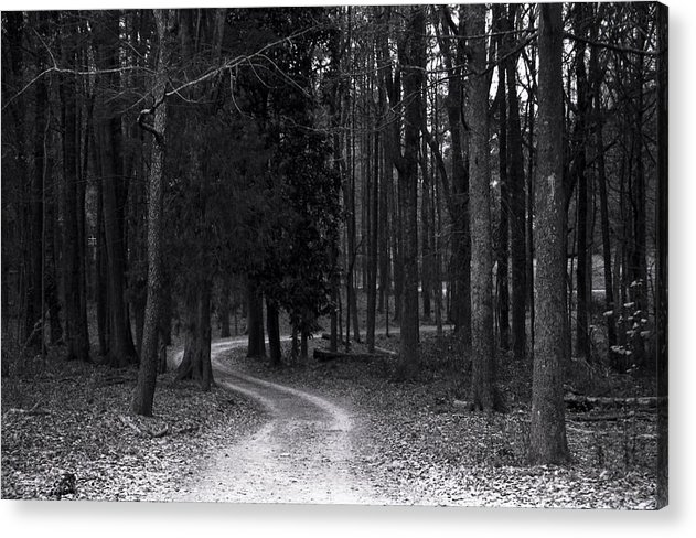 Trees Acrylic Print featuring the photograph The Path by Ayesha Lakes