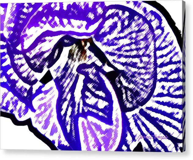 Blue Flower Acrylic Print featuring the digital art Blue Flower by James Temple