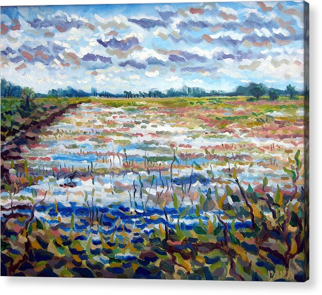 Loxahatchee Acrylic Print featuring the painting Loxahatchee Wetlands by Ralph Papa