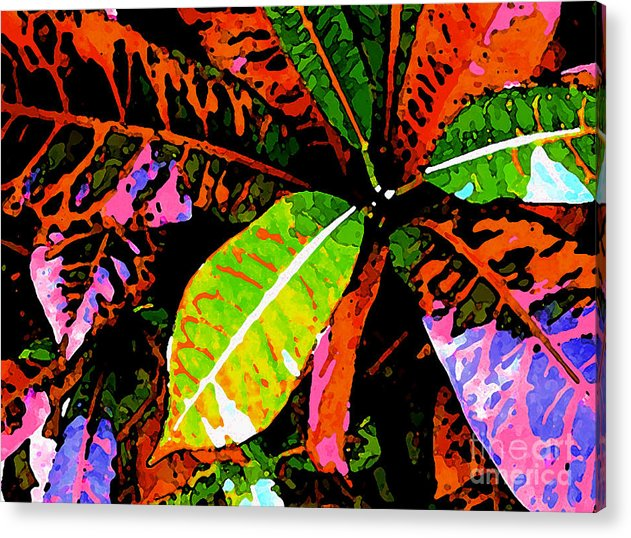 James Temple Acrylic Print featuring the photograph Croton by James Temple