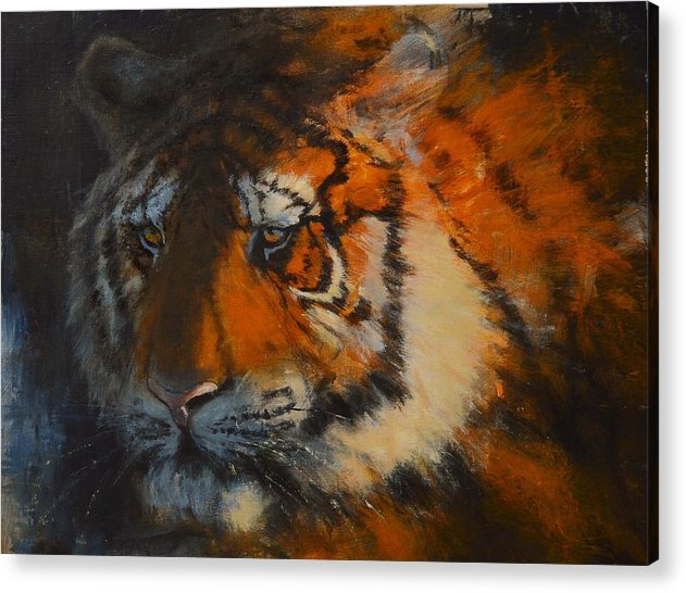 Tiger Acrylic Print featuring the painting Concentration by Greg Clibon