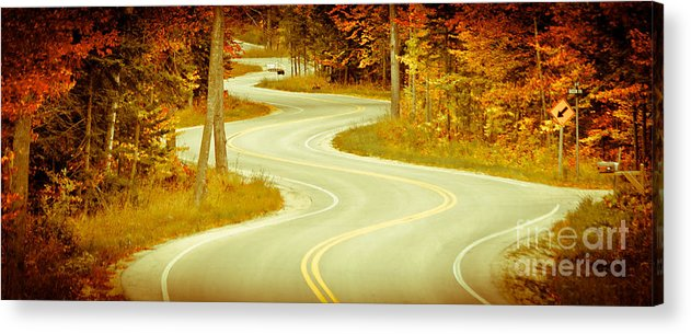 Door County Acrylic Print featuring the photograph Road Bending Through The Trees by Ever-Curious Photography