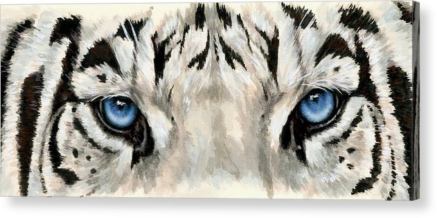 Big Cat Acrylic Print featuring the painting Royal White Tiger Gaze by Barbara Keith