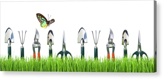Grass Acrylic Print featuring the photograph Garden Tools by Liliboas