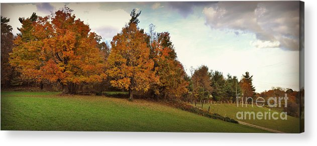 Panoramic Acrylic Print featuring the photograph Parkway Panoramic by Eric Liller