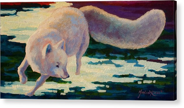 Arctic Acrylic Print featuring the painting Arctic Fox by Marion Rose