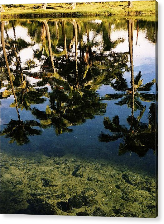 Palms Acrylic Print featuring the photograph Reflected palms by Michael Lewis
