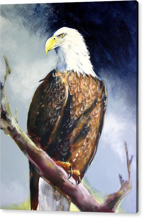 Wildlife Acrylic Print featuring the painting Bald Eagle by Paul Miller