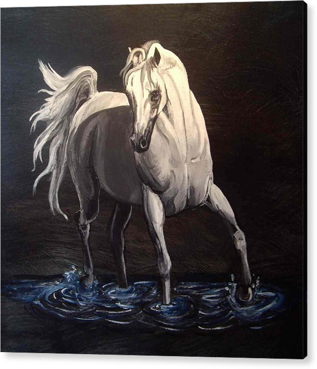 Equine Acrylic Print featuring the painting Midnight Prance by Glenda Smith