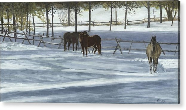 Horses Acrylic Print featuring the painting Someone's Curious by Karen Bockus
