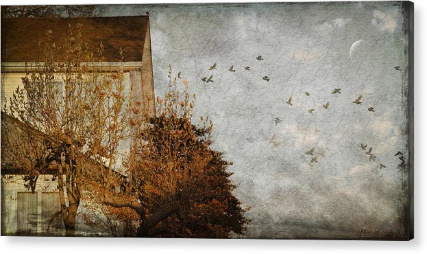 Birds Acrylic Print featuring the photograph Evening by Inesa Kayuta