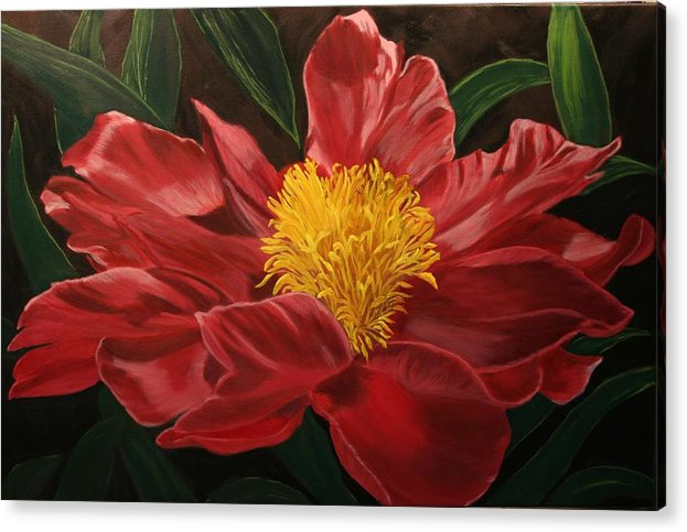 Floral Acrylic Print featuring the painting Peony Japonica by Robert Tower