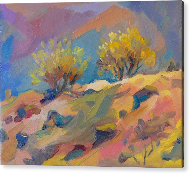 Acrylic Print featuring the painting Colorful Armenia by Goy Tiezar