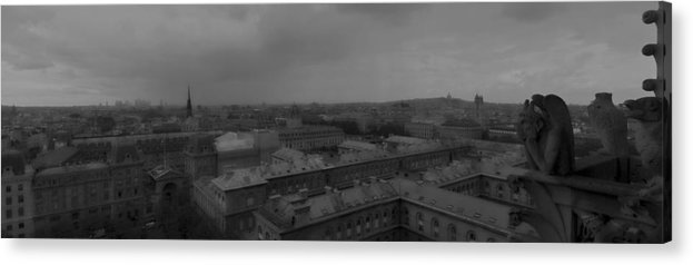 Notre Dame Acrylic Print featuring the photograph Gargoyles Dh 1 by Wessel Woortman
