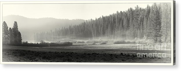 Yosemite Acrylic Print featuring the photograph Misty Morning In Yosemite Sepia by Jane Rix