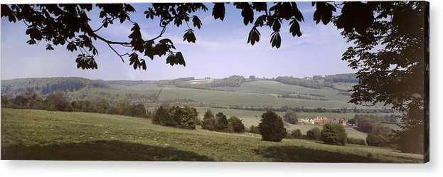 Hampshire Acrylic Print featuring the photograph Pastoral Scene In Hampshire by Daniel Blatt