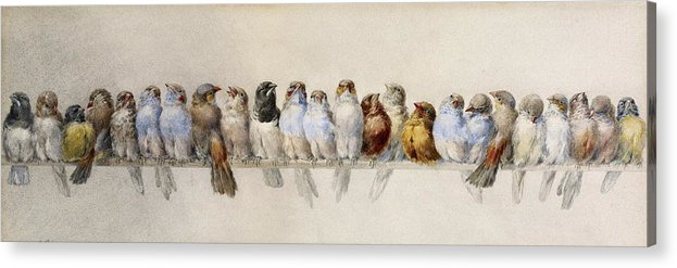 Pheasant Acrylic Print featuring the painting A Perch Of Birds by Hector Giacomelli
